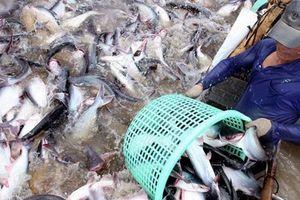 Ngành thủy sản tăng trưởng cao nhất trong 9 năm gần đây