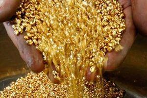 Giá vàng hôm nay 21.5: Sức ép đè nặng, vàng tiếp đà giảm