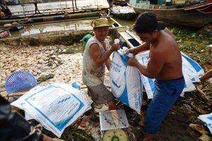Chưa xác định nguyên nhân gần 1.000 tấn cá bè chết trên sông La Ngà
