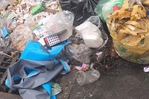 TP HCM: Chính quyền phải dọn nếu rác 'ngự' trên đất công