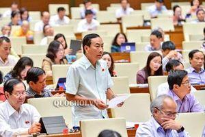 Quốc hội thảo luận về một số nội dung còn ý kiến khác nhau của dự án Luật Giáo dục (sửa đổi)