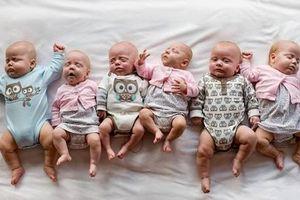 Người mẹ sinh 6 con nhận được lời chúc mừng tử Tổng thống Ba Lan