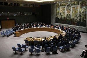 Yêu cầu họp về luật ngôn ngữ Ukraine của Nga bị bác bỏ tại Hội đồng Bảo an