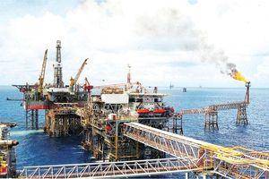 Góc nhìn của đại biểu Quốc hội về dầu khí