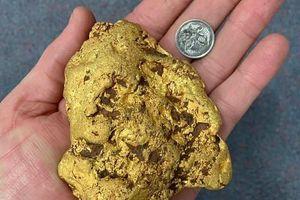 Đi bộ trên cánh đồng, người đàn ông nhặt được cục vàng nặng 1,4kg