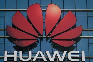 Huawei khẳng định không chịu tác động lớn trước lệnh cấm của Mỹ