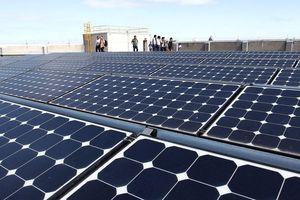 Vận hành gần 90 dự án điện mặt trời: Giảm áp lực vốn xây công trình nguồn điện
