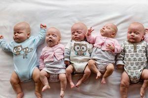 Ca sinh 6 đầu tiên tại Ba Lan thành công ngoài mong đợi