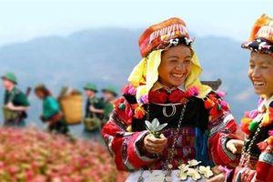 Động lực phát triển của dân tộc thiểu số tại Việt Nam