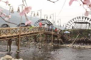 Phát triển ngành 'công nghiệp không khói' ở huyện Tam Đường, Lai Châu