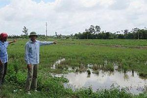 Lừa bán đất lúa, chiếm đoạt hơn 4 tỷ đồng