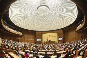 Đại biểu kỳ vọng, Quốc hội thẳng thắn nhìn vào thực tiễn