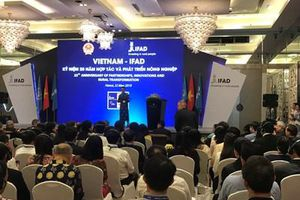 IFAD đầu tư gần 400 triệu USD phát triển nông thôn tại Việt Nam
