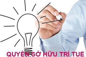 Lo 'vượt rào' cam kết CPTPP về sở hữu trí tuệ