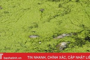 Sông Én đột ngột ô nhiễm nặng, người dân bức xúc