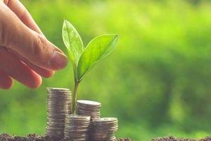 Bảo vệ môi trường: Hà Lan lần đầu tiên phát hành 'trái phiếu xanh'