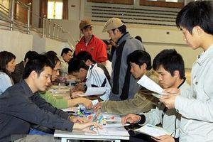 Xử phạt doanh nghiệp xuất khẩu lao động vi phạm quy định về tuyển dụng