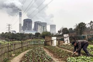 Mục tiêu giảm 1,5°C toàn cầu thất bại vì Trung Quốc tích cực 'nhóm lò' nhiệt điện than