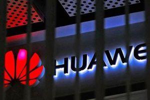 Microsoft rục rịch 'nghỉ chơi' với Huawei