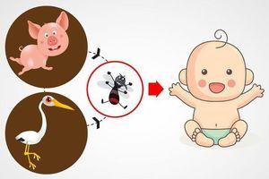 Bệnh viêm não Nhật Bản nguy hiểm như thế nào?