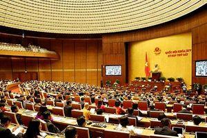 Sửa Luật Kiểm toán Nhà nước để tăng hiệu quả phòng chống tham nhũng