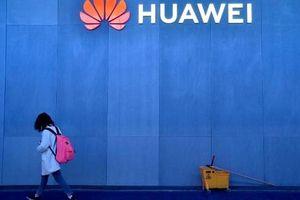 Một loạt nhà mạng lớn ở châu Á và châu Âu dừng đơn đặt hàng với Huawei