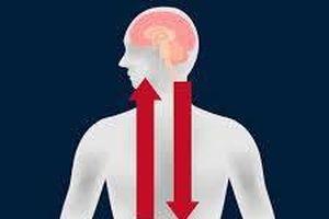 Những nghiên cứu đột phá về ruột giúp phòng chống bệnh tật tốt hơn