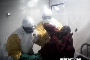 WHO kêu gọi điều chỉnh chiến lược đối phó với dịch Ebola ở CHDC Congo