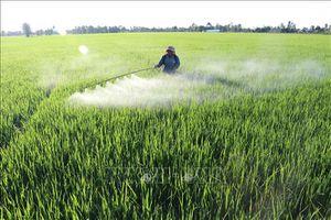 Đòn bẩy đắc lực thực hiện tái cơ cấu nông nghiệp ở Đồng Tháp