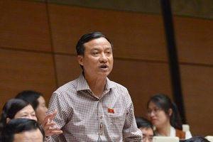 ĐBQH Bùi Văn Xuyền: 'Có thể lấy vụ ông Nguyễn Hữu Linh làm án lệ'