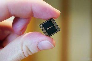 Huawei 'tan giấc mộng' tự thiết kế chip của riêng mình