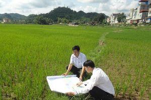 Sử dụng đất đang tiềm ẩn lớn nguy cơ lãng phí, tham nhũng