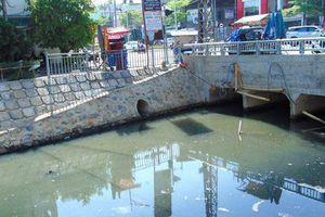 Đà Nẵng: Hồ Trung Nghĩa bị ô nhiễm nặng mùa nắng nóng