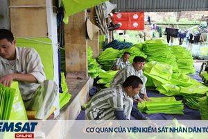 Nên hay không nên cho phạm nhân ra ngoài trại giam tham gia lao động sản xuất