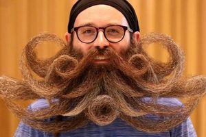 Những bộ râu độc đáo từ Giải vô địch râu và ria thế giới năm 2019