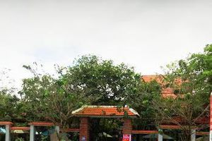 Quảng Nam: Đang điều tra làm rõ một cán bộ huyện nhận tiền 'bôi trơn'