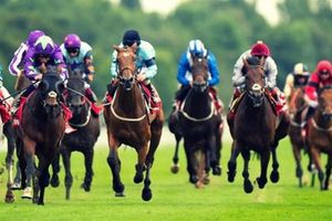 Hà Nội: Chưa hoạt động trường đua ngựa vẫn hút 4,75 tỷ USD vốn FDI