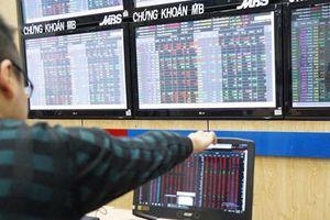 Bất thường việc phát hành cổ phiếu tại DGT: Quyền cổ phần nhà nước giảm nghiêm trọng