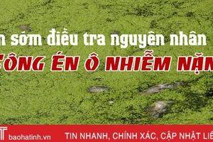 Sớm điều tra nguyên do sông Én ô nhiễm nặng