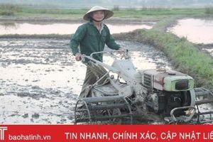 Mưa 'vàng' tắm mát ruộng đồng Hà Tĩnh