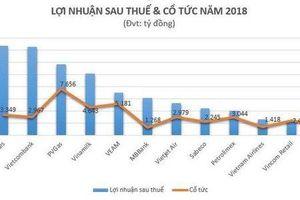 Top các 'ông lớn' chi trả nghìn tỷ đồng cổ tức năm 2018