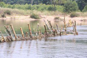 Dân đóng cọc trên sông ngăn khai thác cát: Doanh nghiệp bị phạt 1,6 tỷ đồng