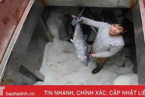 Giúp ngư dân Hà Tĩnh giữ hải sản tươi sạch ngay trên tàu cá