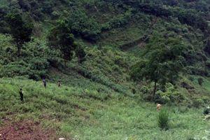 Hà Giang: Xe tải bất ngờ lao xuống vực sâu hàng trăm mét