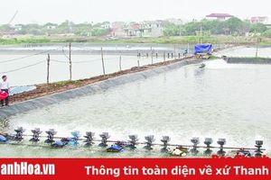 Tổng sản lượng khai thác và nuôi trồng thủy sản của huyện Hậu Lộc đạt 18.839 tấn