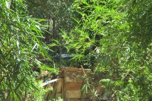 Bình Định: 'Vàng tặc' gây hậu quả nặng nề cho người dân xã Ân Nghĩa