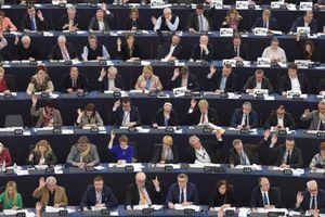 Bầu cử Nghị viện: Bước ngoặt cho EU?