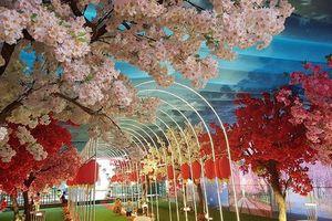 Mô hình 'Thiên đường Sắc hoa Anh Đào' sẽ được di chuyển tới nhiều địa phương để phục vụ du khách