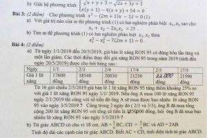 'Giá xăng tăng' vào đề thi lớp 10 trường Năng khiếu