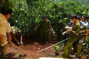 NHỮNG VỤ ÁN RÚNG ĐỘNG DƯ LUẬN TUẦN QUA: Giết nhân tình vì không được 'yêu', 3 bà cháu bị hàng xóm sát hại ở Lâm Đồng